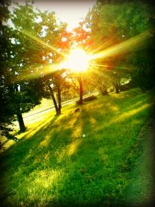 bright_sunshine_by_marissaangell-d55k923