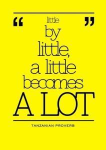 Little-by-little-a-little-becomes-a-lot.-Tanzanian-Proverb