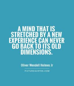 a-mind-that-is-stretched-by-a-new-experience-can-never-go-back-to-its-old-dimensions-quote-1