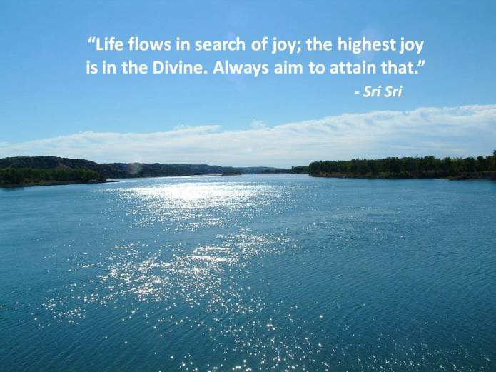 Quotes by sri sri on joy-2