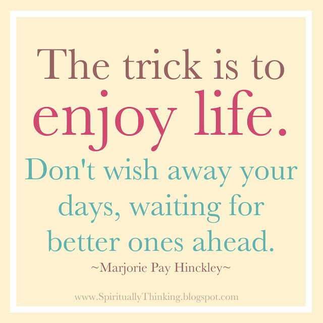 the-trick-is-to-enjoy-the-life-quotein-cute-design-for-you-amusing-quotes-about-enjoying-life