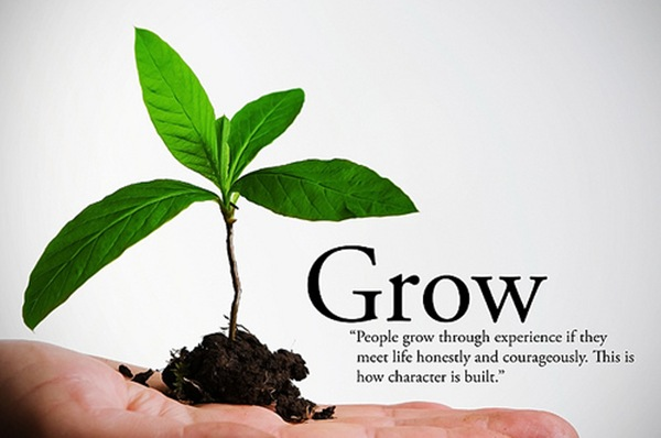 grow_business_thumb