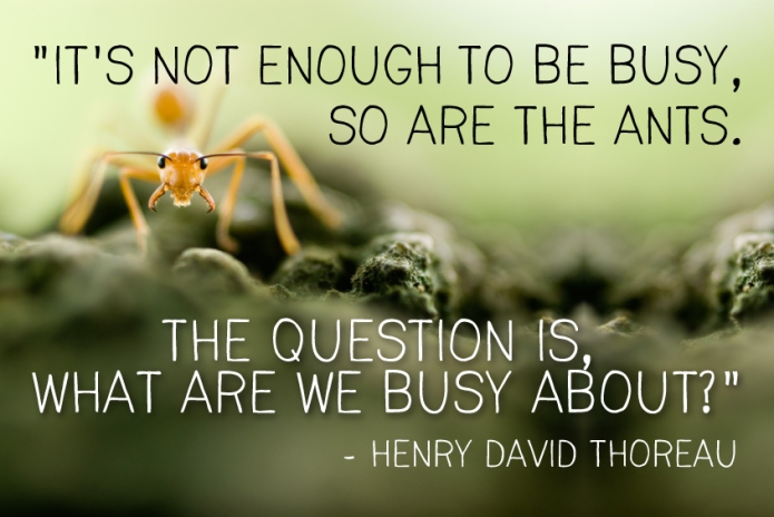 thoreau-ant-quote