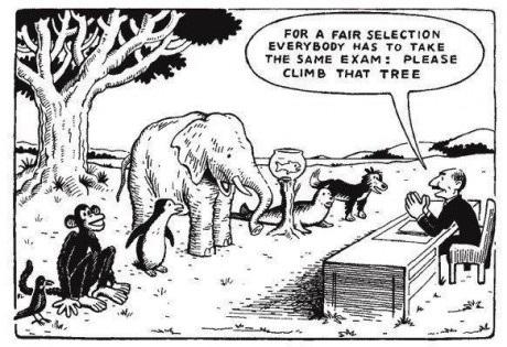 climb-this-tree
