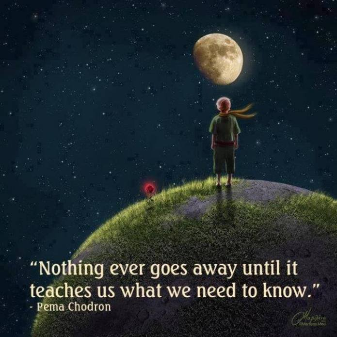 nothing-ever-goes-away-until-it-teaches-us-what-we-need-to-know-pema-chodron