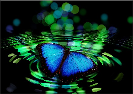 blue-butterfly-spiritual-meaning